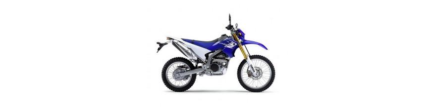 WR 250 R 2008/2020